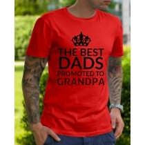 The best dads promoted to GRANDPA