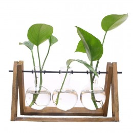 Terrarium Planter With Wood Stand